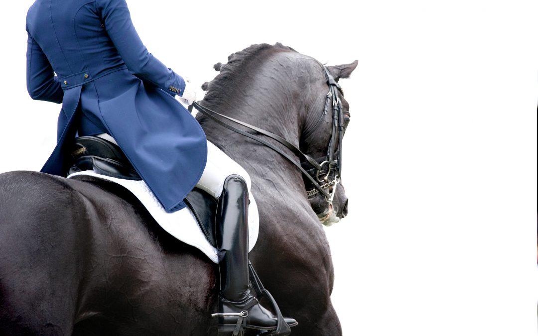 Paarden dressuurwedstrijd